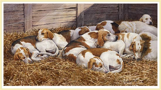 Foxhounds by Anthony Forster