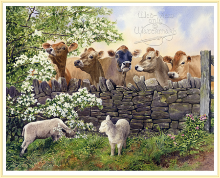 jersey cattle by Anthony Forster click for details