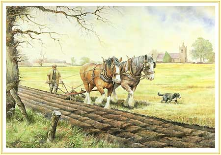 Early Furrows Heavy Horse Painting 9th November