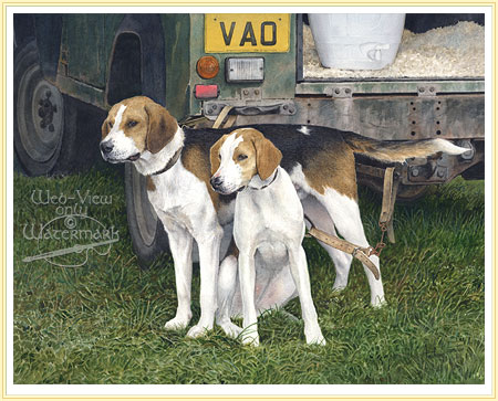 Fox Hounds - Patience - by Anthony Forster the Farmer's artist - click ...
