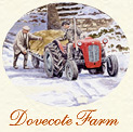 Dovecote Farm Christmas Card cameo