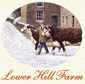 Lower Hill Farm Christmas Card cameo