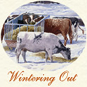 Wintering Out: Christmas Card cameo